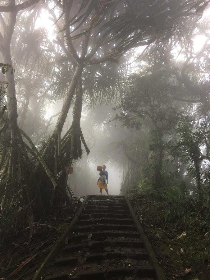 BaliUnseen